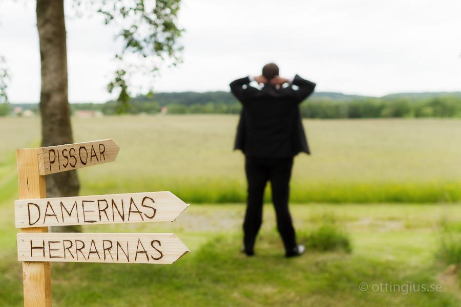 Lite bondkomik vid bröllop på landet