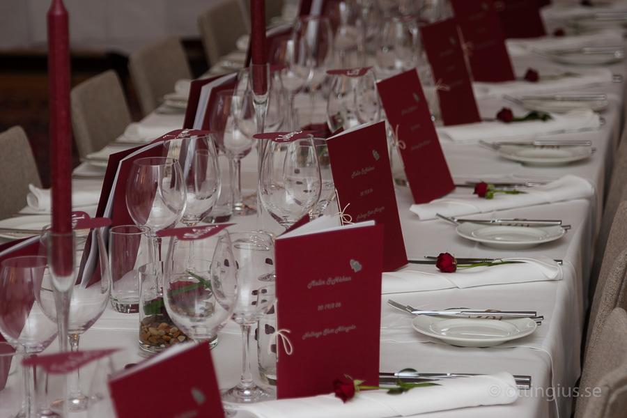 Bröllop och fest på Nolhaga Slott i Alingsås