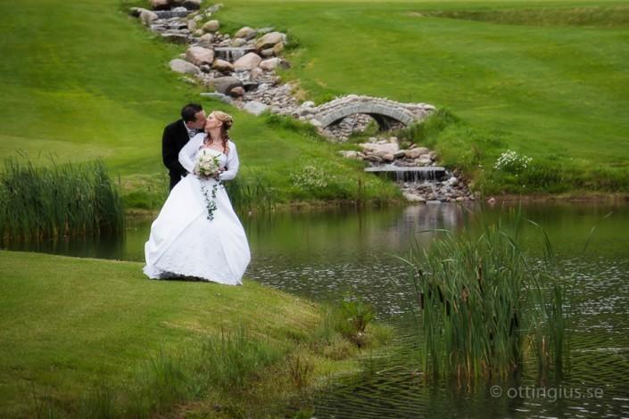 Bröllopsfotografering på Albatross Golfbana
