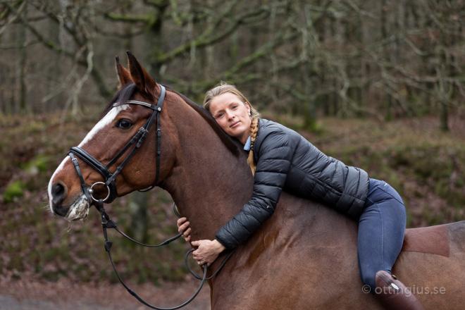 ryttare och häst