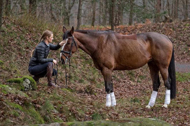 Ryttare med sin häst